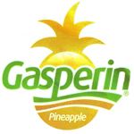 www.pineapplegasperin.com.mx