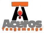 www.fundicionacerostangamanga.com