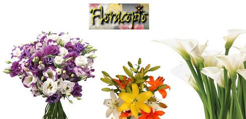 floracopio