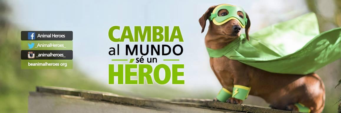 animal_heroes