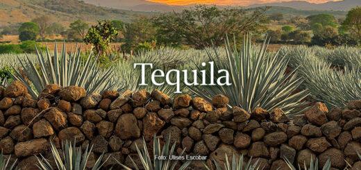 Tequila - foto Ulises Escobar