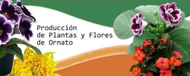 Vivero Xochimilco
